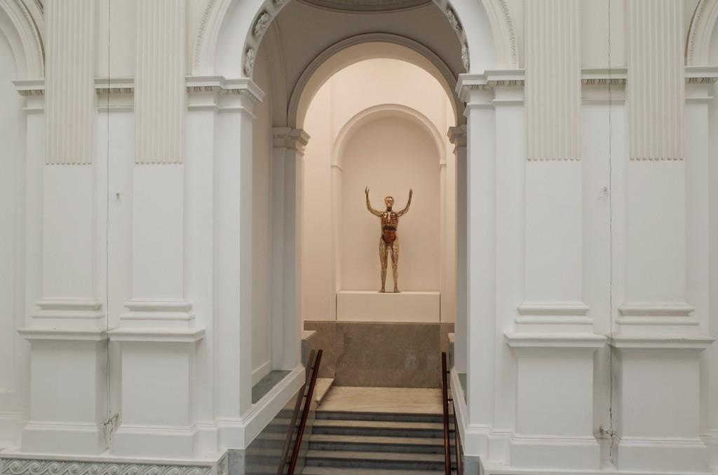 Transparent Man, 1995 (after Franz Tschackert's original from 1930), mixed media, Stiftung Deutsches Hygiene Museum, Dresden, photo by Paweł Eibel