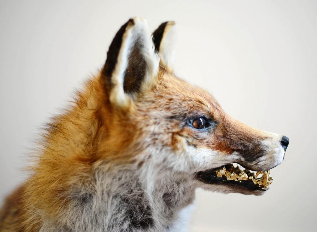 Filip Markiewicz, Golden Empire Fox, 2015 Filip Markiewicz