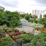 Kollektives Lernen in der Sommerakademie im Prinzessinnengarten