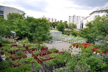 Prinzessinnengarten  © Marco Clausen / Prinzessinnengarten