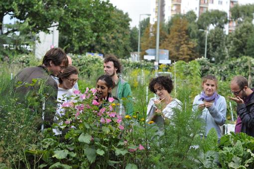 Nachbarschaftsakademie  © Marco Clausen/ Prinzessinnengarten